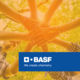 Convocatoria BASF Conectar para Transformar 2019 - Chile